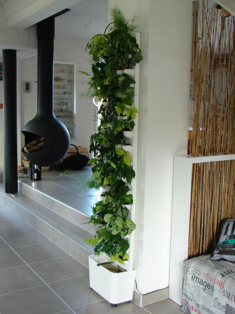 Plante Sur Les Murs kit mur végétal flowall blanc 42x40cm