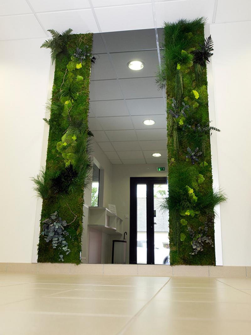 Plante Sur Les Murs mur végétal stabilisé sur-mesure